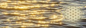 光聲イメージ波
